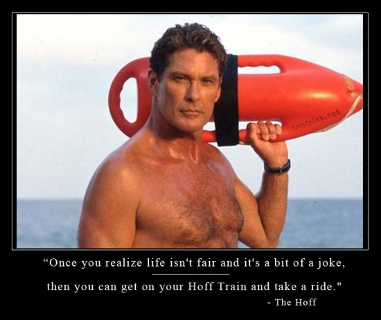 The Hoff Jokes