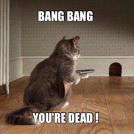 055ce98c406a988c94705d8934a10e8b dead cat jokes