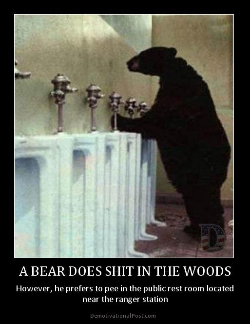Does a bear crap in the woods Jokes