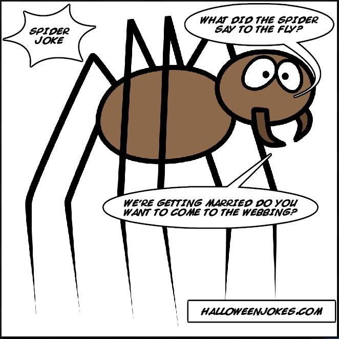 Halloween Spider Jokes.Spider Web Jokes