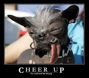 Cheer Up Jokes