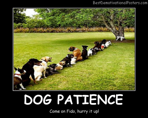 Patience Jokes