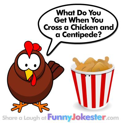 Kids Chicken Jokes