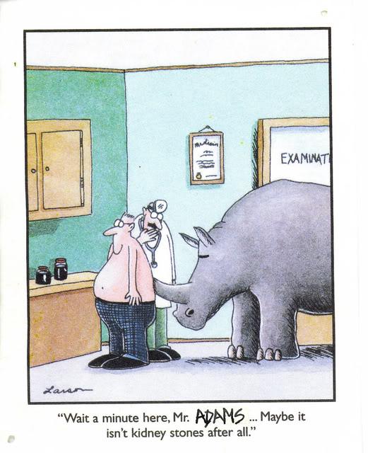 Kidney Stone Jokes
