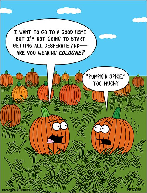 Funny fall Jokes