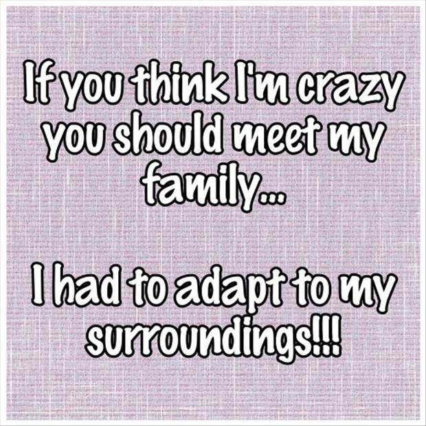Crazy Family Jokes