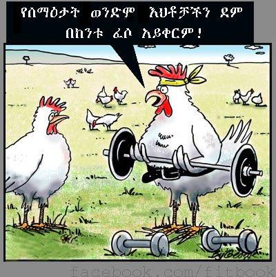 Funny Ethiopian Amharic S  E A A E  B E   E A D  E B A E A A E  B E  Ad E A B  E   E  D E B B E  Bd September