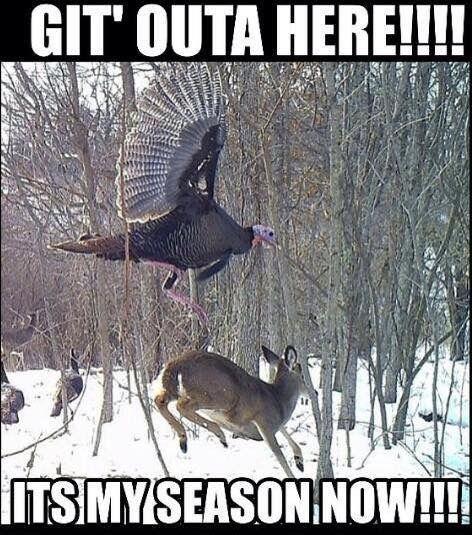 Hilarious Hunting Jokes