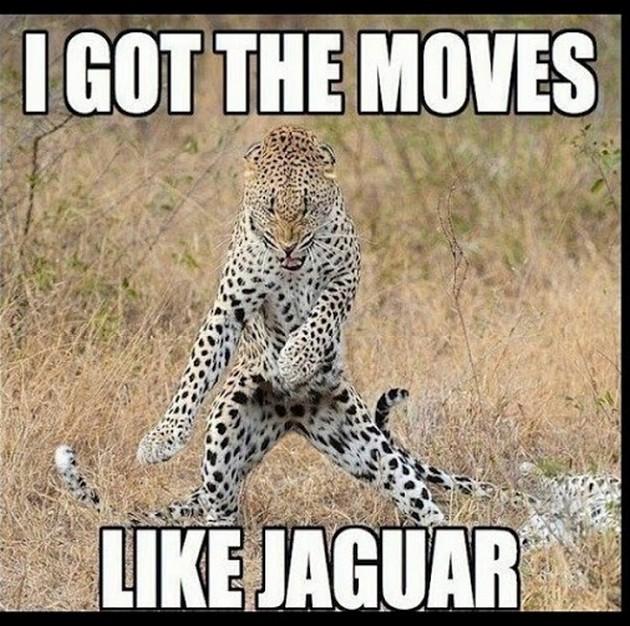 Image of: Memes Funny Puns 05 Imgflip Funny Punny Jokes