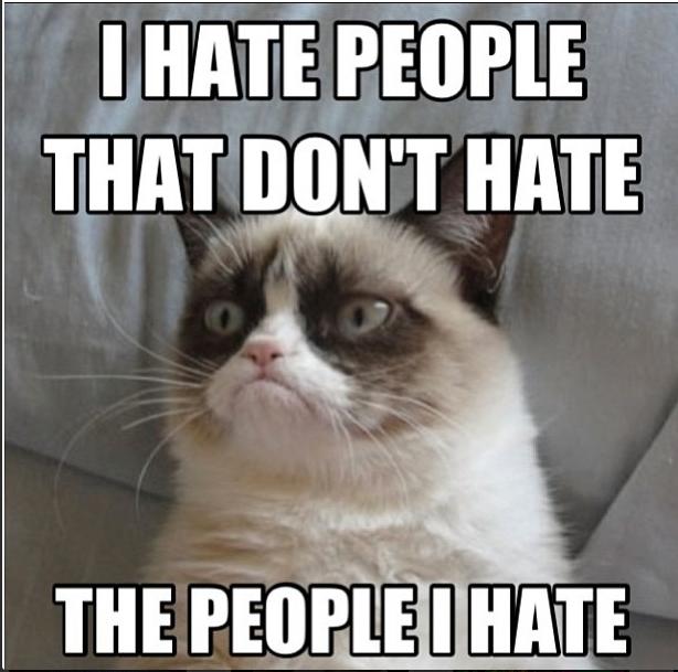 I hate cat Jokes