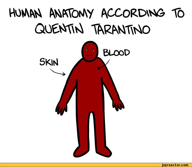 Human Anatomy Jokes