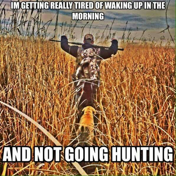 Hog Hunting Jokes