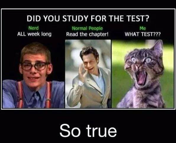 Funny Study Jokes