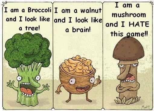 17 best images about food humor on pinterest food humor