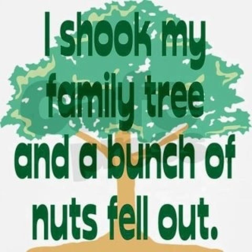 Image result for crazy family tree