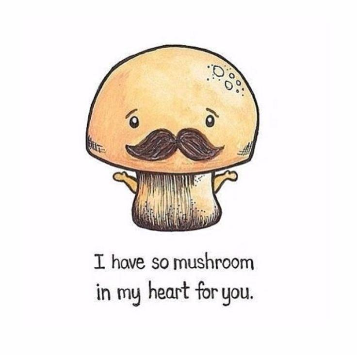 mushrooms jokes