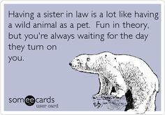 Sister In Law Jokes