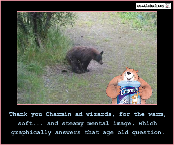 Does a bear crap in the woods jokes spectacle nora hamzawi casino de paris