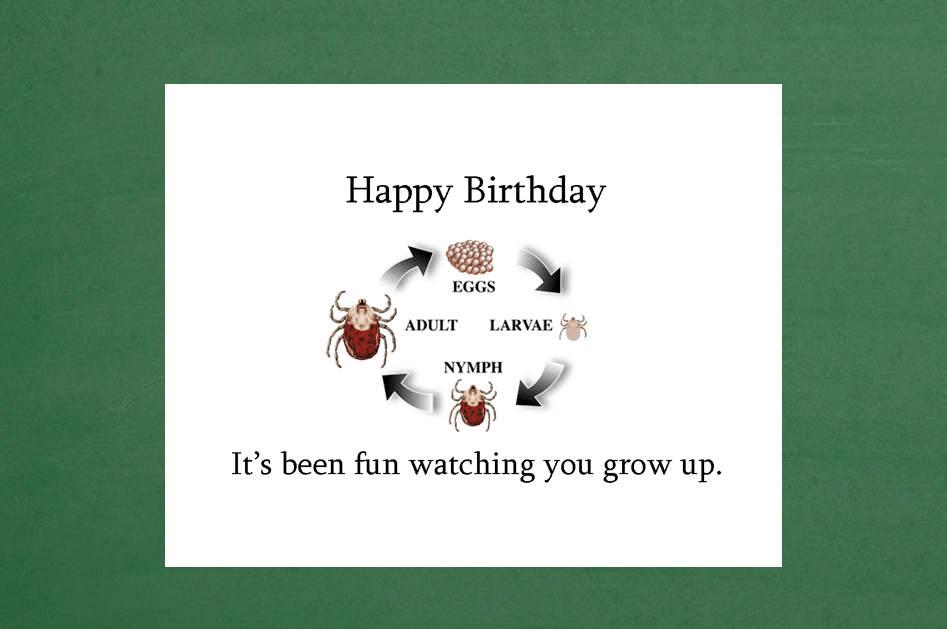 Funny 16th Birthday Jokes