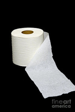One ply toilet paper Jokes