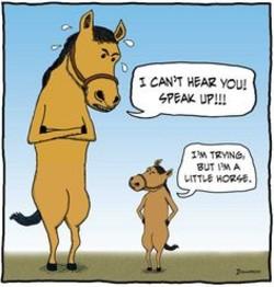 horse race betting jokes