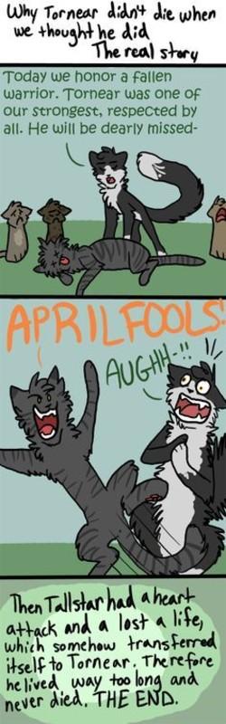 Warrior cats Jokes